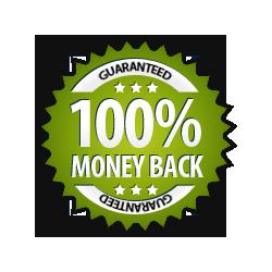 Money Back Guarantee 100% - Burst Badge Green